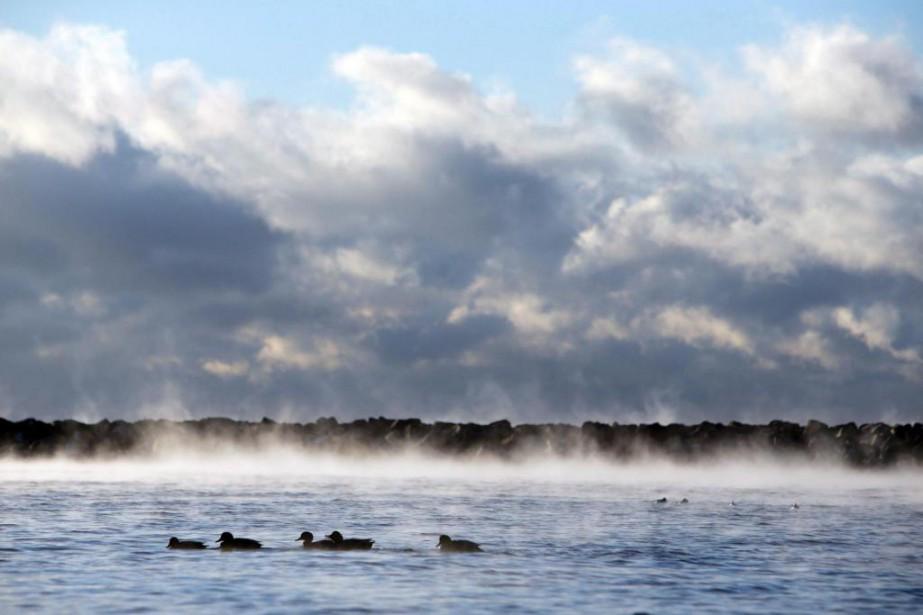«Cette eau qui est si abondante ici qu'on... (PHOTO COLE BURSTON, ARCHIVES LA PRESSE CANADIENNE)