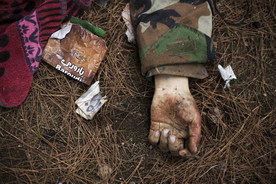 L'Observatoire syrien des droits de l'hommerapporte la mort... (photo manu brabo, archives AP)