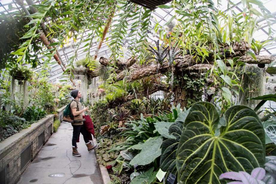 La vocation scientifique du Jardin botanique deMontréal pourrait... (Photo Alain Roberge, Archives La Presse)