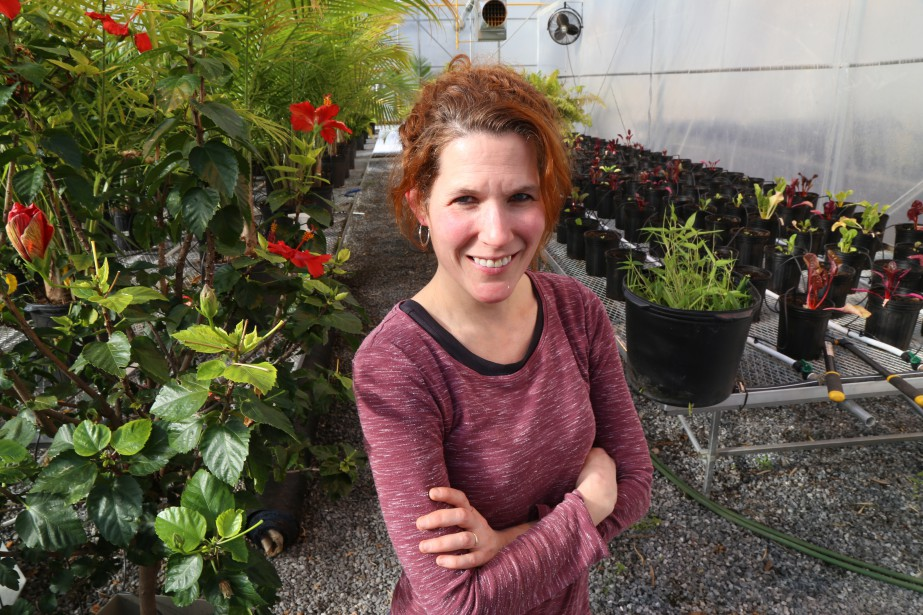 Bambous, laitues et autres végétaux sont cultivés dans les serres du Zoo de Granby. Sur la photo, l'horticultrice Caroline Guertin. | 6 février 2017