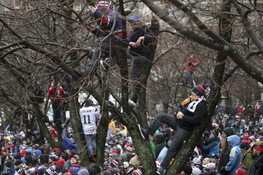 Il y avait même des amateurs grimpés aux arbres pour ne rien perdre du défilé. | 7 février 2017
