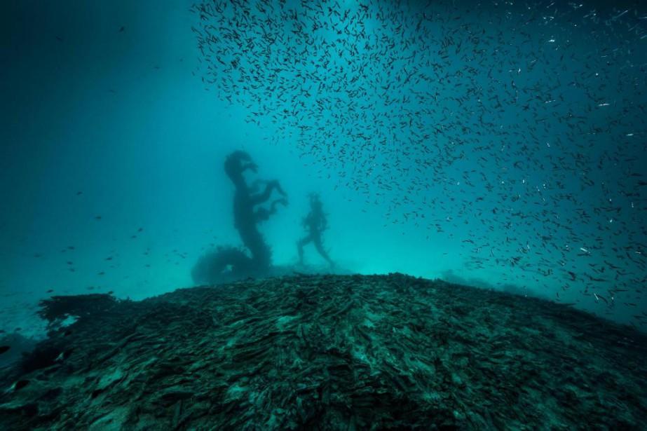 Visuel relié à l'exposition Treasures from the Wreck... (Photo Christoph Gerigk, fournie par la Collection Pinault)