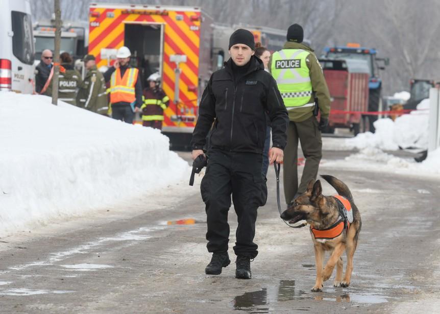 Plusieurs stratégies ont été utilisées afin de retrouver le travailleur sous les décombres, dont deux équipes canines de recherche. | 23 février 2017