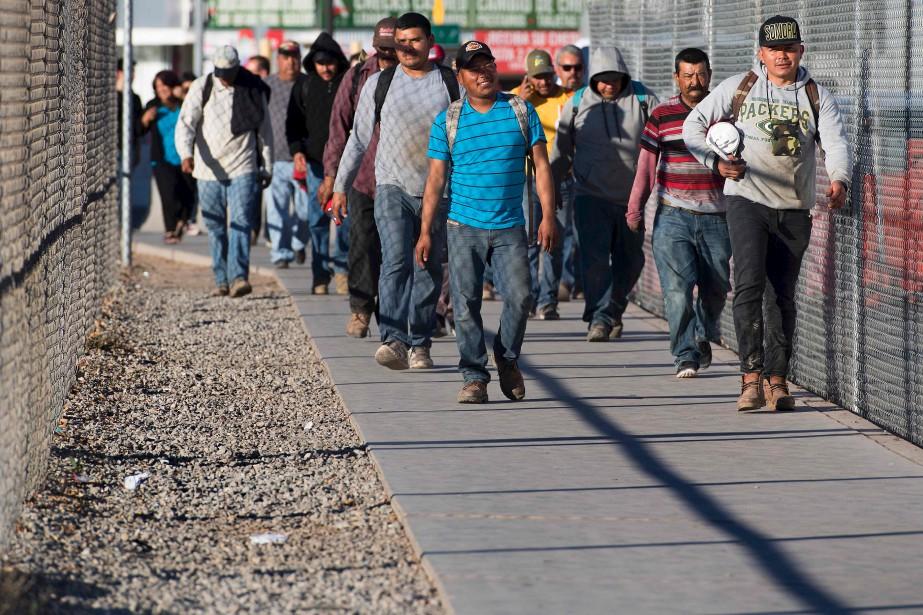 Des travailleurs agricoles mexicains rentrent chez eux, par le poste-frontière américain de San Luis, Arizona, après une journée dans les champs côté américain. (AFP, Jim Watson)