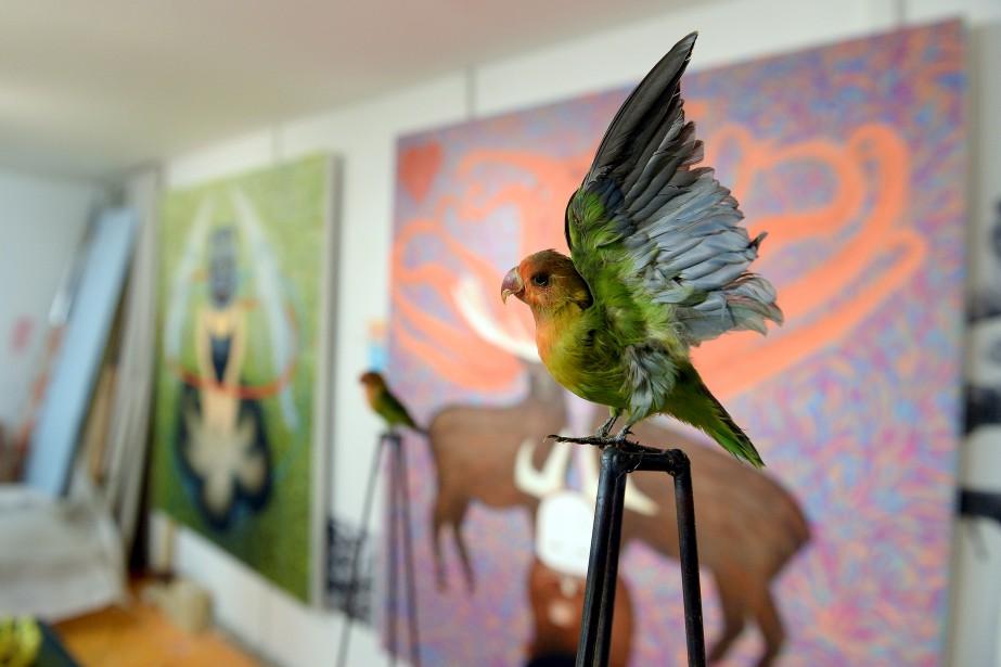 Un oiseau d'Isabelle Demers (Le Soleil Erick Labbé)