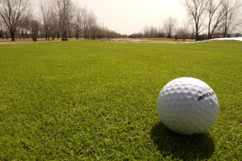 À l'avenir, des propriétaires de club de golf... (Photo Alain Roberge, archives La Presse)