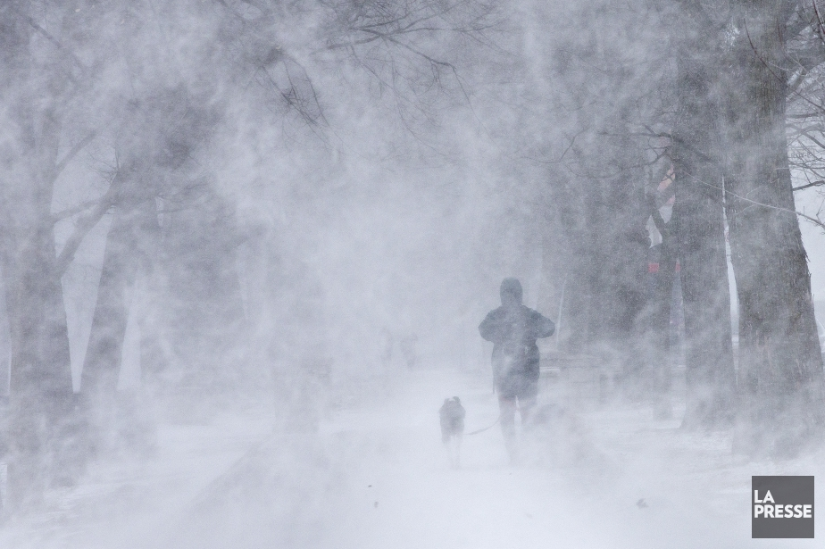 Environnement Canada a émis une série d'avertissements de...