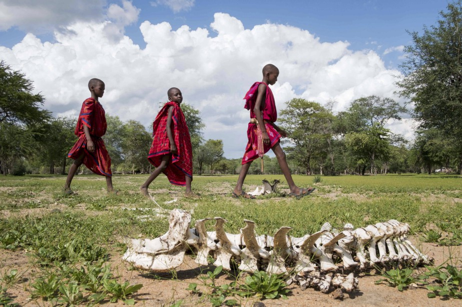 Trois enfants passent devant le cadavre d'un des 422 bovins que leur famille a perdu durant une sécheresse, en Tanzanie. Le district de Kilosa a été grandement touché par la sécheresse depuis 2016 et, malgré des pluies récentes, les troupeaux de la région sont malades et grandement diminués.  | 17 mars 2017