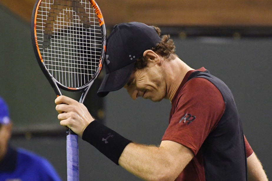 Andy Murray... (PHOTO Mark J. Terrill, ARCHIVES AP)