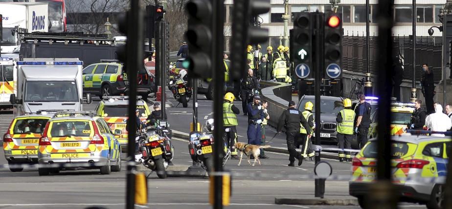Des chiens pisteurs sont à l'oeuvre sur le pont de Westminster. | 22 mars 2017