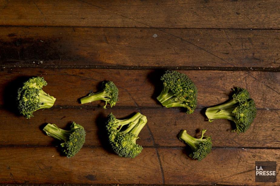Les études sur la nutrition? Les gens... (PHOTO DAVID BOILY, ARCHIVES LA PRESSE)