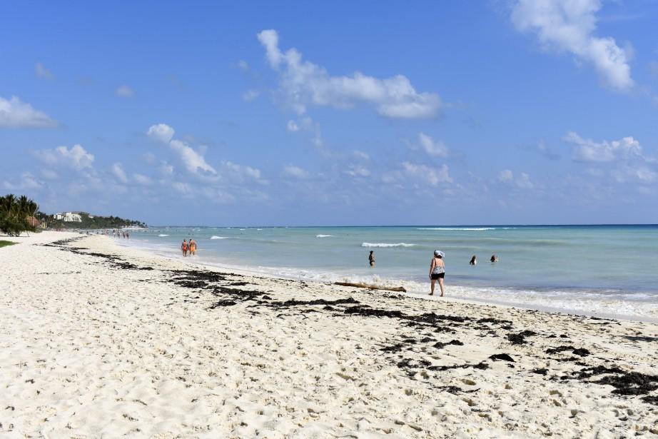 Des restes humains ont été trouvés àLos Cabos,... (Photo archives Ap)