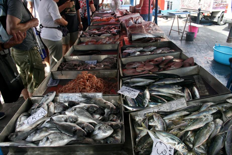 Le stock halieutique de la Méditerranée est en... (Photo Richard Buchan, La Presse canadienne)