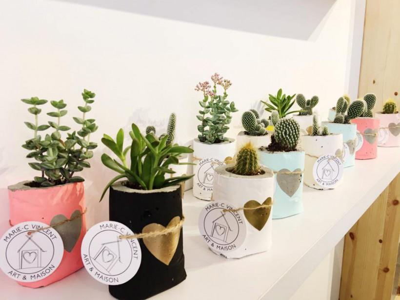 Les cactus et plantes grasses en pots de Marie-C Vincent Art & maison. ()