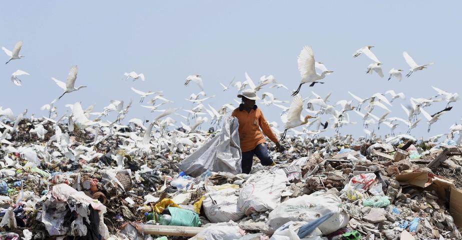 Un travailleur sri lankais ramasse des ordures et non ordonneà Karadiyana, une banlieue de Colombo, après que la décharge principale de la ville a été fermée à la suite de son effondrement tuant 32 personnes et détruisant 145 habitations. | 20 avril 2017