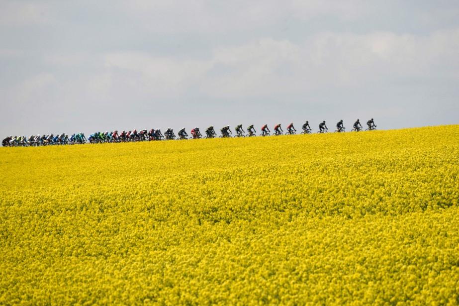 Point de vue sur la Flèche Wallonne, une course cycliste tenue en Belgique. | 20 avril 2017
