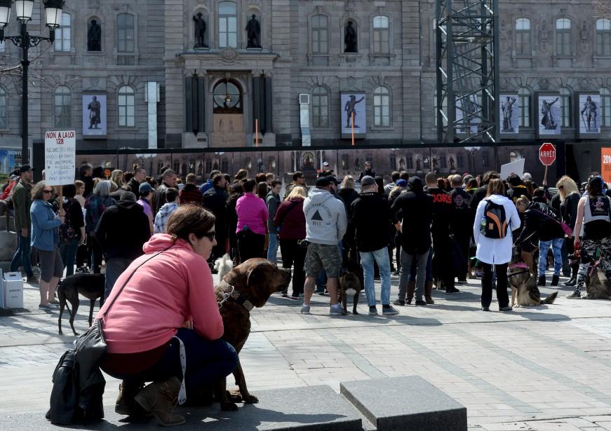 Manifestation contre le projet de loi 128 - Loi pour les proprietaires ...