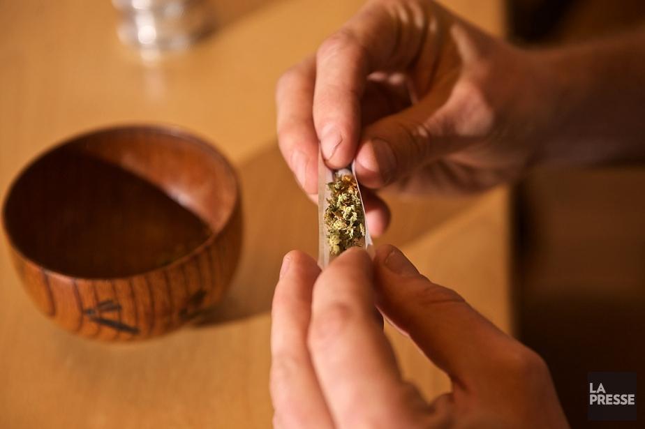 Les évaluations de Marijuana Policy Grouppour le secteur... (Archives La Presse, André Pichette)