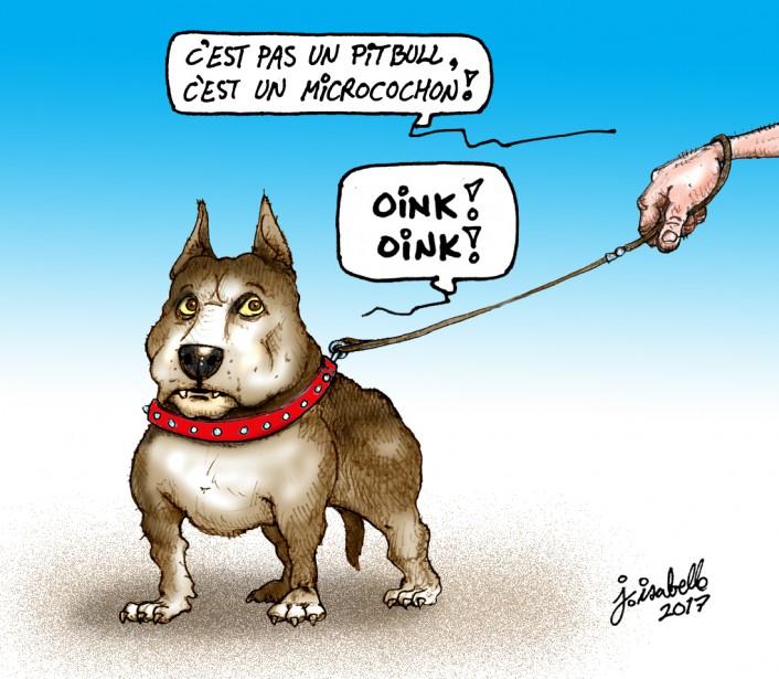 Caricature du 4 mai | 4 mai 2017