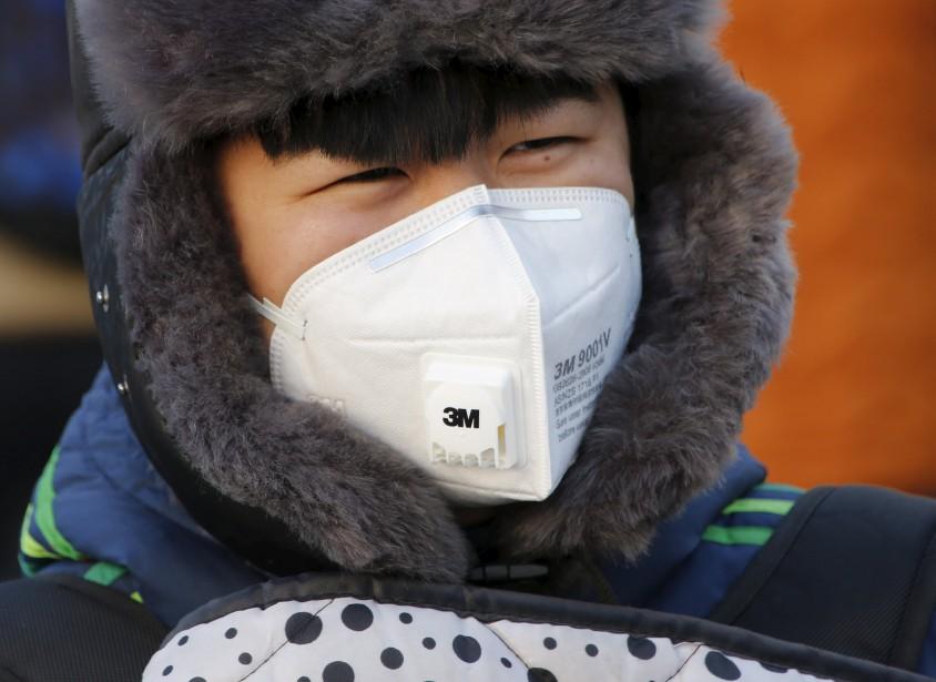Une piétonne porte un masque durant l'alerte de smog extrême de l'hiver 2015. (REUTERS)