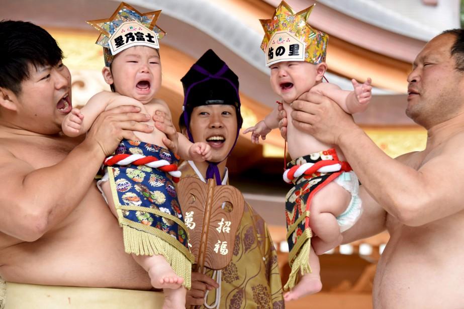 Deux lutteurs sumos honorent une tradition voulant que des bébés qui pleurent grandiront en santé, pendant un événement spécial à Sagamihara, au Japon. | 14 mai 2017