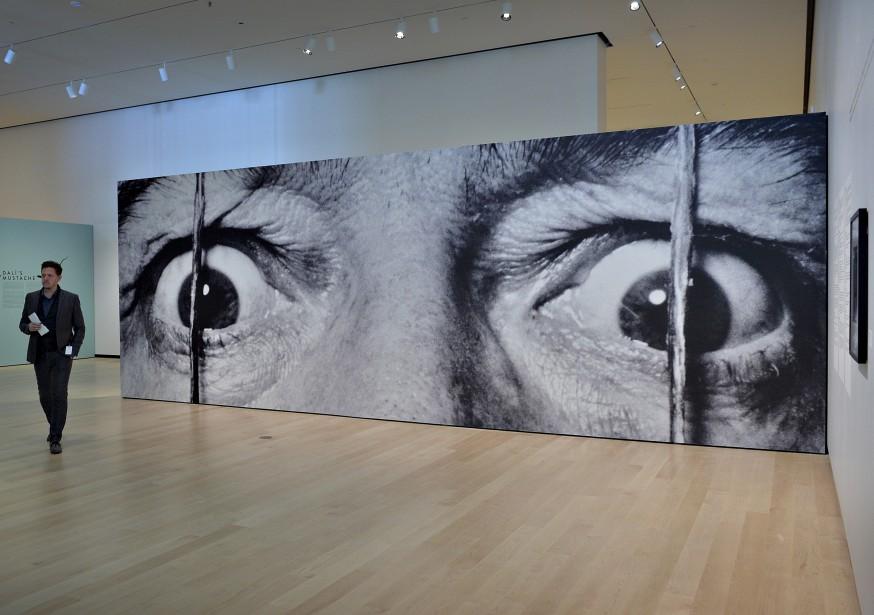 Le maître photographe du XX e siècle, Philippe Halsman, a exploité les portraits d'artistes comme Dali. | 14 juin 2017