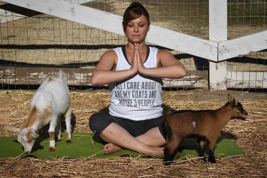 Adonna Ebrahimi est étirée de tout son long sur son tapis de yoga,... (PHOTO AFP)