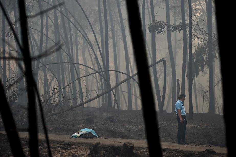 Un policier se tient près du corps d'une victime du feu. (AFP, Patricia De Melo Moreira)