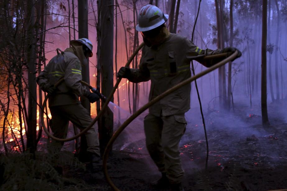 De nombreux pompiers ont été déployés pour combattre le feu de forêt. (AP, Armando Franca)