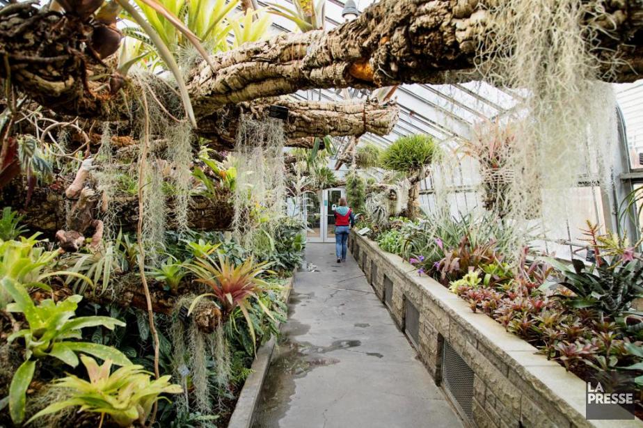 Le Jardin botanique de Montréal a été fondé... (PHOTO ALAIN ROBERGE, ARCHIVES LA PRESSE)