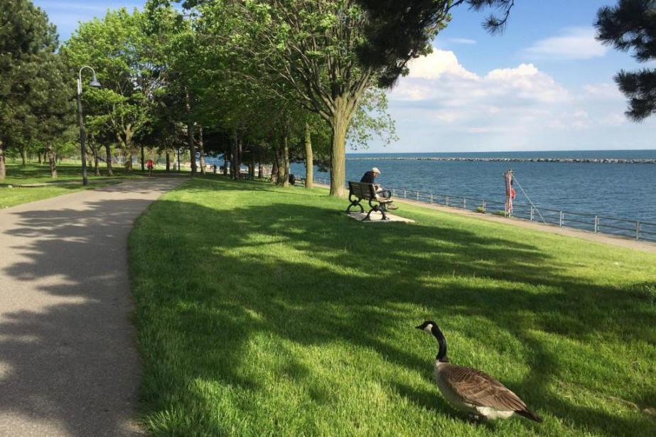 Vélo sur le bord du lac Ontario.... (Photo Guillaume Roy, collaboration spéciale)