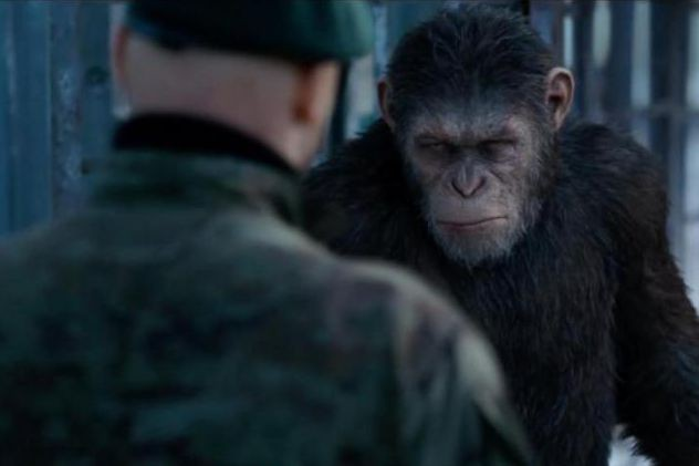 War for the Planet of the Apes ... (Photo fournie par Fox)