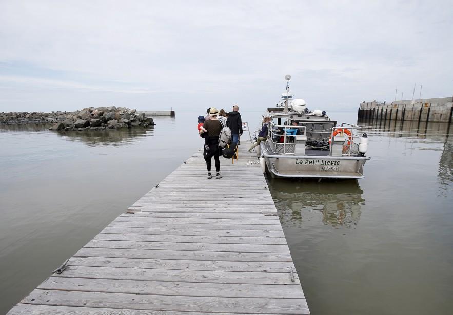 Oubliez les voitures et vélos sur l'Îles-aux-Lièvres, que des humains et leurs bagages (Le Soleil, Yan Doublet)