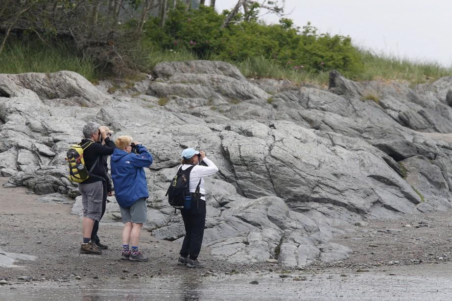 Les randonneurs sont nombreux sur l'Île-aux-Lièvres où les sentiers abondent. Il est possible de marcher une après-midi complet sans rencontrer quiconque. (Le Soleil, Yan Doublet)