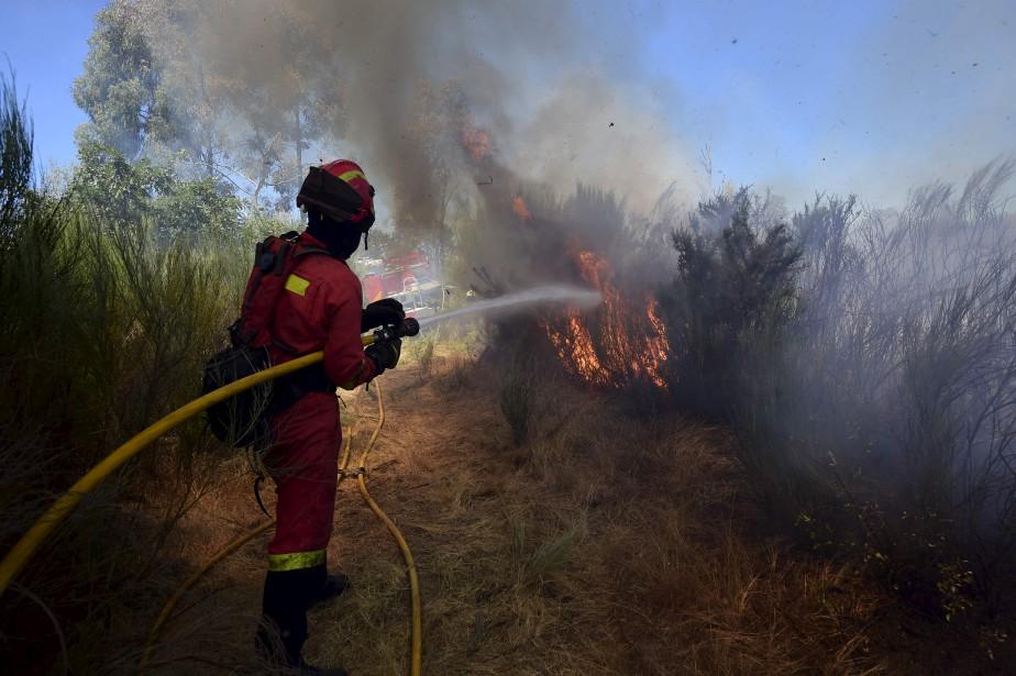 Un membre de l'Unité militaire d'urgences (UME) combat les flammes d'un feu de forêt à Vilardevós, dans le nord-ouest de l'Espagne. | 4 août 2017