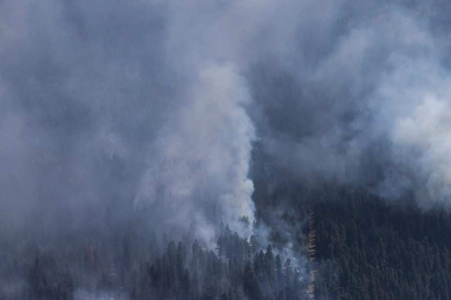 Les feux de forêt en... (Photo Darryl Dyck, archives La Presse Canadienne)