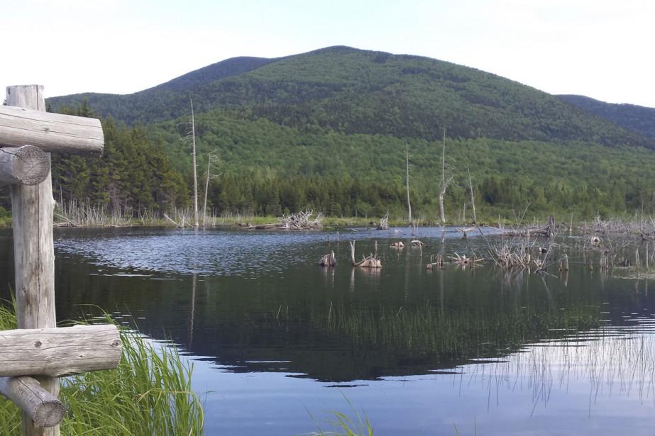 Le mont Gosford est un incontournable pour les amants de randonnées. On y va pour ses grands espaces, son magnifique couvert forestier, ses rutilants ruisseaux, son interminable panorama qui nous permet d'apercevoir le mont Mégantic, la municipalité de Lac-Mégantic, la station de ski Sugarloaf au Maine, le New Hampshire. Plusieurs sentiers sont proposés pour gravir ses 1193 mètres, ce qui en fait le 7 e  sommet du Québec. Michel Laliberté, La Voix de l'Est  | 11 août 2017