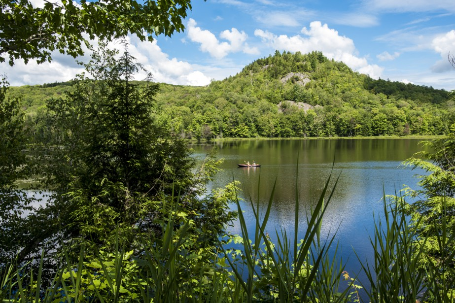 Au parc national du Mont-Orford, dans le secteur du lac Stukely, l'Étang-aux-Cerises propose ses eaux calmes autant aux observateurs qu'aux pagayeurs. Il suffit de s'équiper d'un guide et de suivre les bouées numérotées pour explorer l'étang en canot ou en kayak à travers le parcours écologique. C'est l'escapade idéale pour apprécier une nature humaine et vivante.  Stéphanie Girard, La Tribune  | 11 août 2017