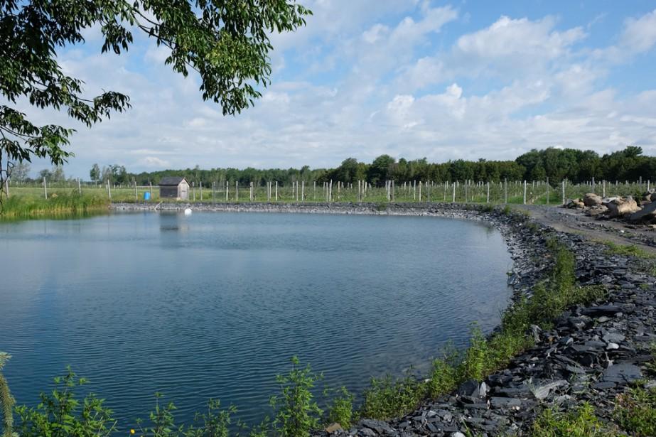 La Caravane de l'irrigation de l'IRDA, dirigée par l'agronome Carl Boivin, était de passage à Dunham, au Verger Pierre Côté. Ce derniera fait creuser son lac après avoir presque manqué d'eau l'an dernier. | 14 août 2017