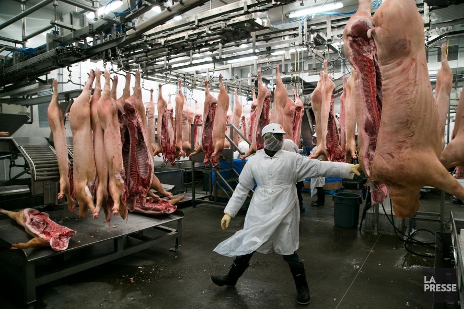 L'usine de transformation de porcs d'Olymel à Saint-Esprit,... (Photo Martin Tremblay, Archives La Presse)