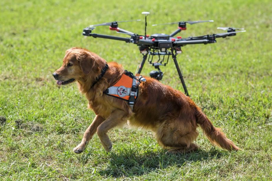 Les drones utilisés coûtent entre 1600 à 30... (PHOTO AFP)