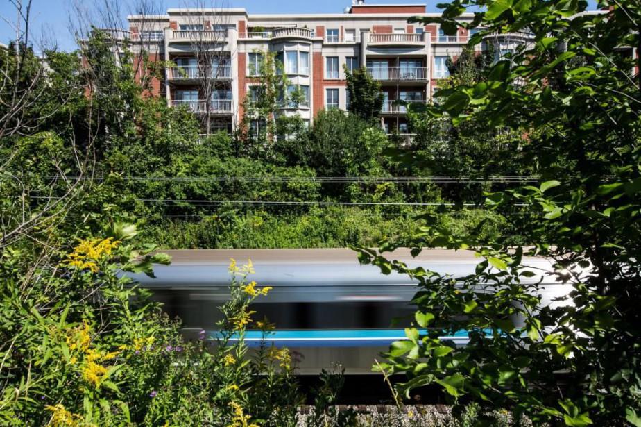 La portion du REM prévue à Mont-Royal sera... (Photo Edouard Plante-Fréchette, La Presse)