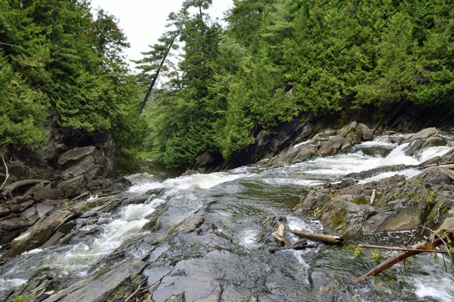 Principale source du lac Massawippi, les chutes de la rivière Tomifobia valent le détour. À une quinzaine de minutes de Magog, on peut les apercevoir en parcourant le Sentier nature Tomifobia. Dune longueur de 19 kilomètres, il relie le lac Massawippi à Beebe au Vermont en longeant la rive ouest de la rivière Tomifobia, en passant par Stanstead.  Stéphanie Girard, La Tribune  | 1 septembre 2017