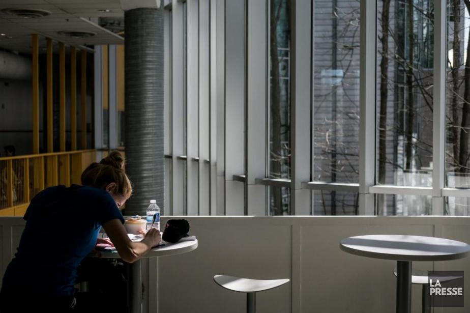 L'Université de Montréal mène une campagne de publicité... (PHOTO ÉDOUARD PLANTE-FRÉCHETTE, ARCHIVES LA PRESSE)