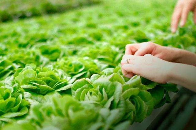 S'alimenter sainement et demeurer actif fait partie des priorités de notre...