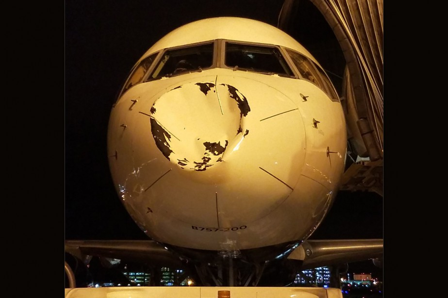 Selon la compagnie Delta Airlines, «il est probable... (Photo tirée du compte Twitter de Steven Adams)