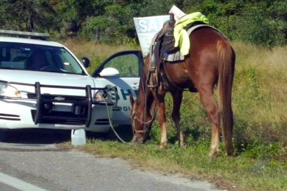 Donna Byrne, 53 ans, a été arrêtée jeudi... (Photo AP)