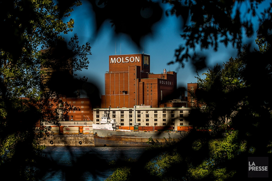 L'usine Molson dans le port de Montréal, en... (PHOTO MARTIN TREMBLAY, ARCHIVES LA PRESSE)