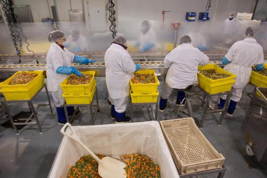 Les impacts des problèmes de main-d'oeuvre à Rigaud... (Photo Ivanoh Demers, La Presse)