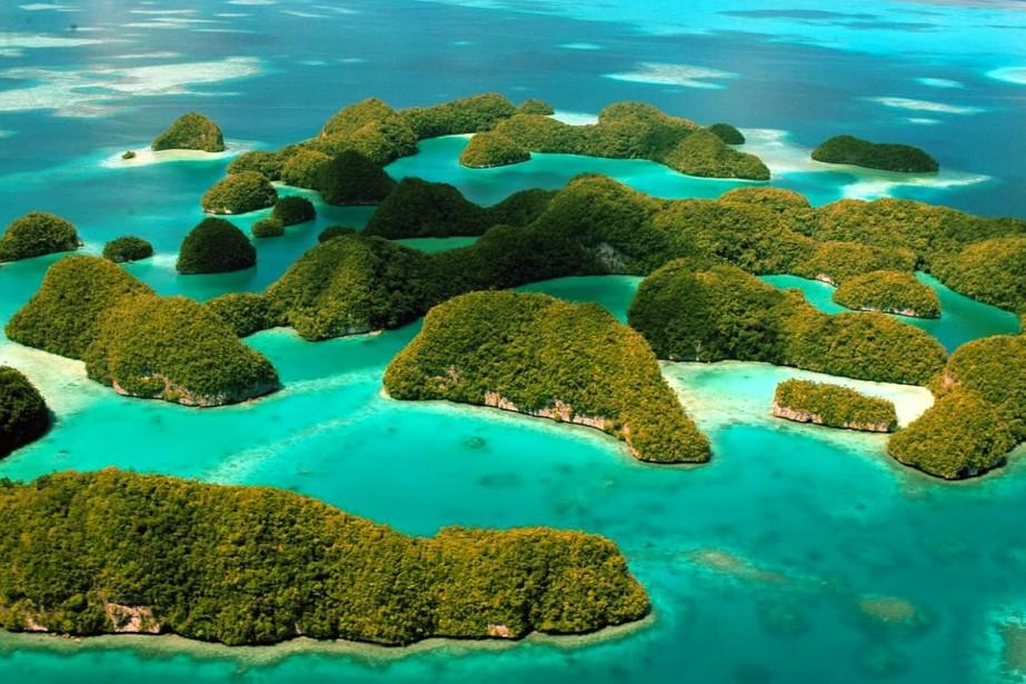 Avec ses eaux cristallines, ses récifs coralliens intacts... (Photo fournie par Palau Visitors Authority)